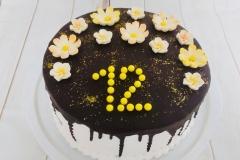 Torte-slascicarstvo-barbara-213