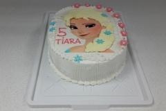 Torte-slascicarstvo-barbara-24