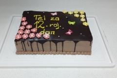Torte-slascicarstvo-barbara-26