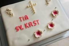 Torte-slascicarstvo-barbara-281