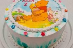 Torte-slascicarstvo-barbara-326