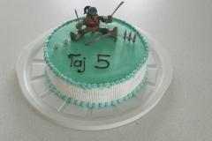 Torte-slascicarstvo-barbara-34