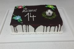 Torte-slascicarstvo-barbara-6