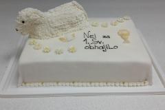 Torte-slascicarstvo-barbara-8