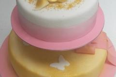Torte-slascicarstvo-barbara-80